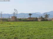 Mallorca 4 (C)2003