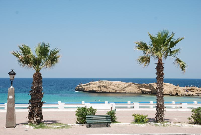 Delphin Resort Monastir, slika 5